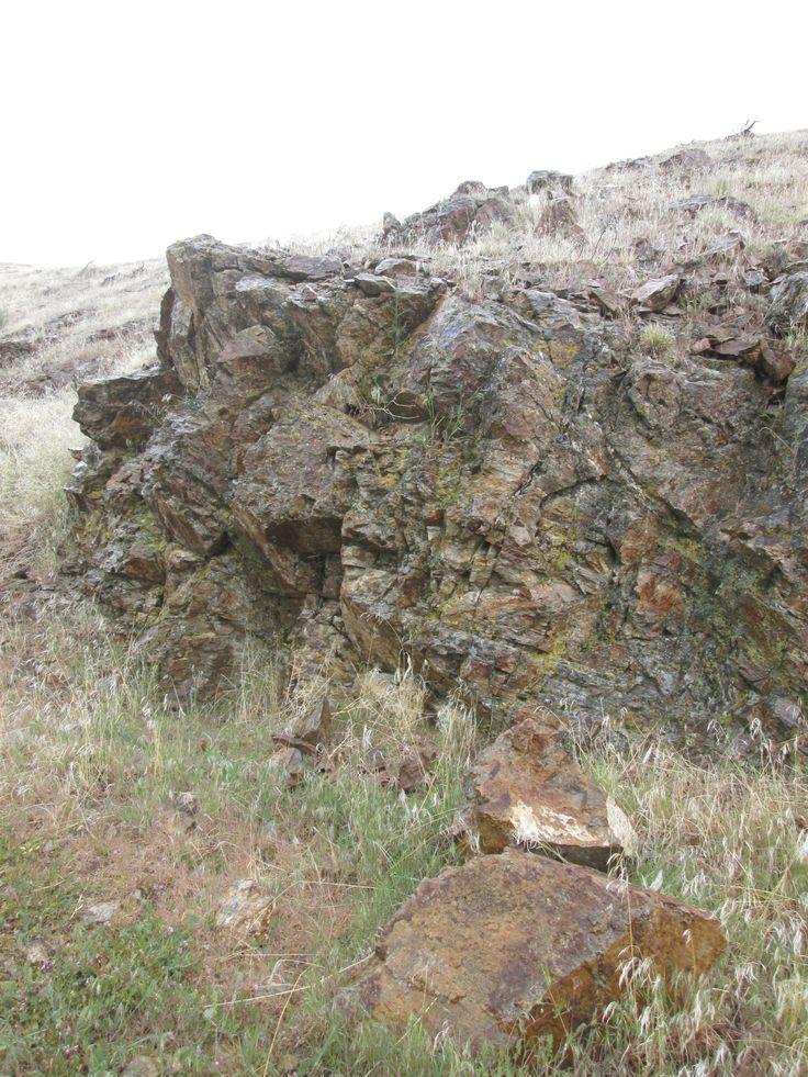 CP Whitaker image  rocky roads ahead
