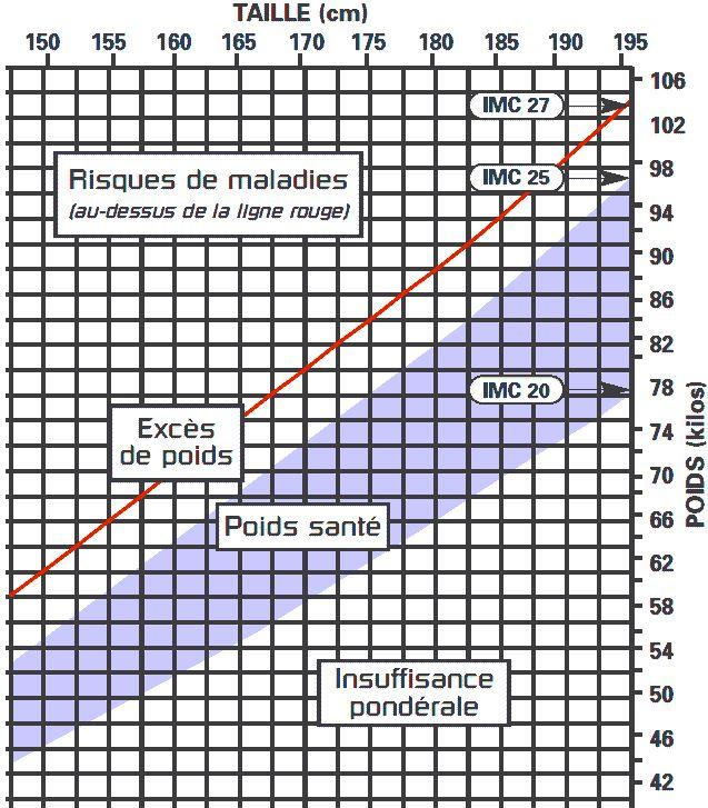 Le calcul IMC ou indice de masse corporelle, musculaire et graisseuse, peut être fait à partir d'un tableau mettant en relation le poids et la taille au carré