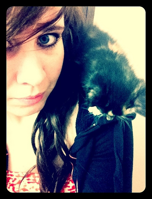 Phoebe kitty <3 miss that little squirt!
