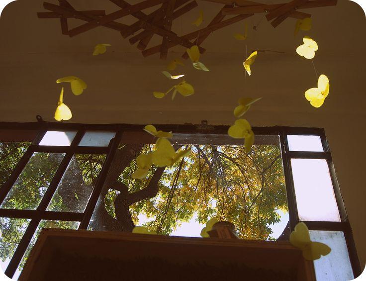 Vidriera con mariposas de La Posta Eco vista desde adentro