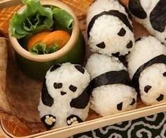 Baby Panda Sushi Rolls!