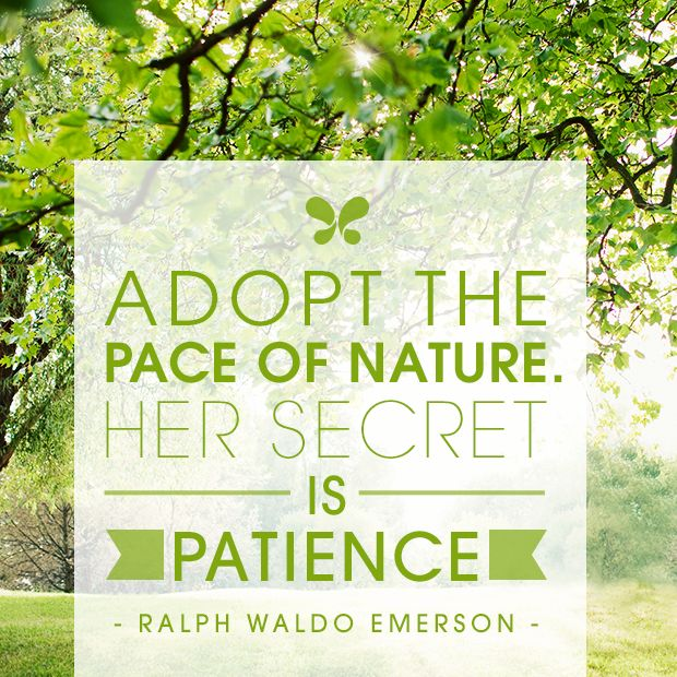 essay on nature by emerson The project gutenberg ebook of essays, by ralph waldo emerson this ebook is for the use of anyone anywhere at no cost and with this was the essay nature.