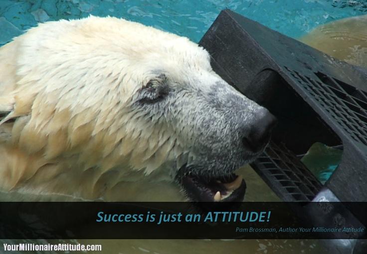 Success is just an ATTITUDE!  Pam Brossman, Author