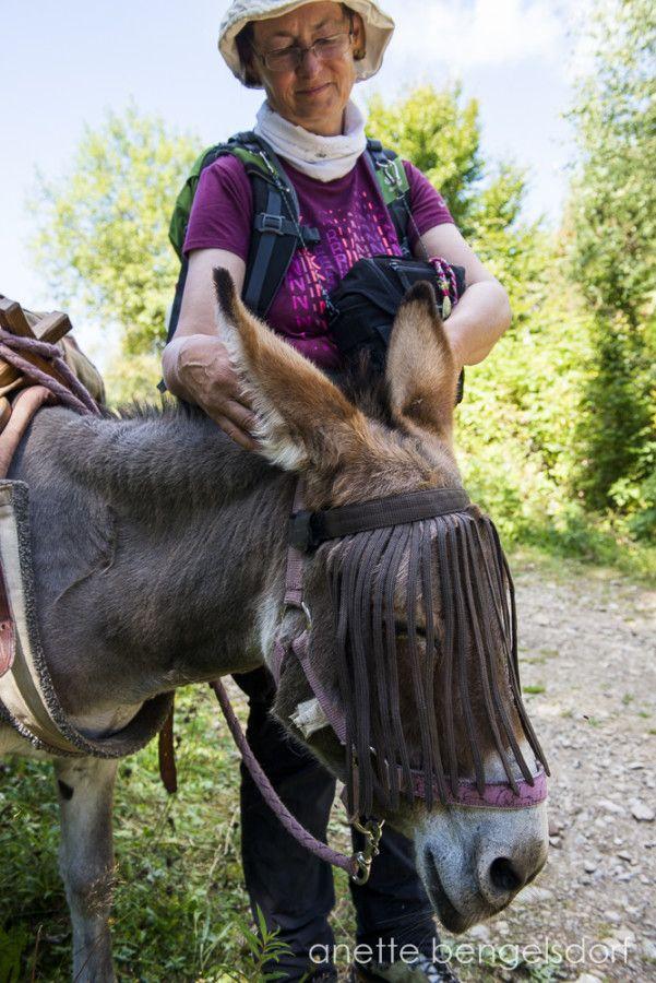 Karin Schwind erlebte auf dem Stevensonweg einiges. In ihrem Buch Vier Frauen auf zwölf Beinen erfährt man mehr über ihre 150 km in den französischen Cevennen.