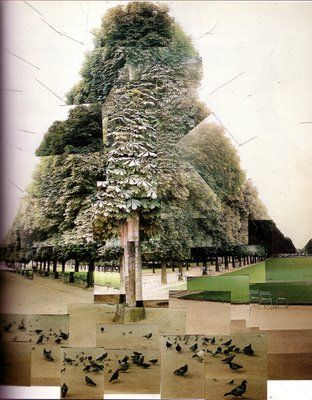 The overlapping of different photographs works well in this particular collage of David Hockney's. It gives highlight to the shades of greens in the tree and grassy area. Another component that draws me in is the perspective. Two point perspective really makes the viewer focus on the large tree and pigeons scattered about the ground.