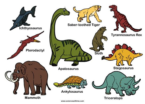 19 best images about Dino week on Pinterest | Names, Activities ...