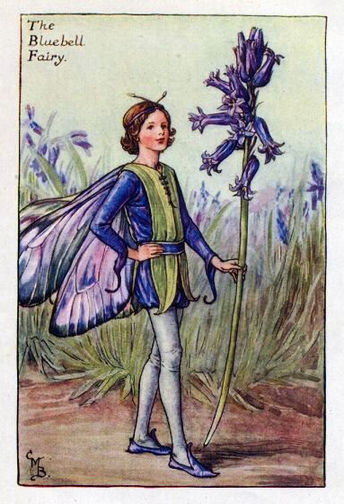 The Bluebell Fairy Cicely Mary Barker