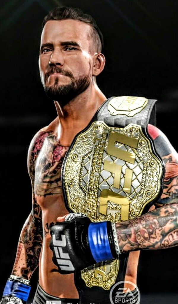 UFC 2 CM Punk