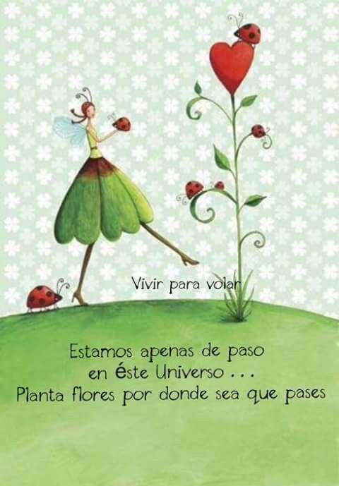 Qué florezca la paz, la armonia y el amor en nuestro camino!..