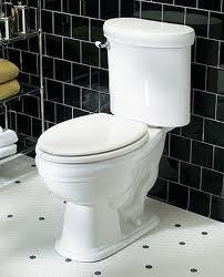 Pulizia ed ecologia del WC http://vivereverde.blogspot.it/2009/06/pulizia-ecologica-del-wc.html    provato! funziona!
