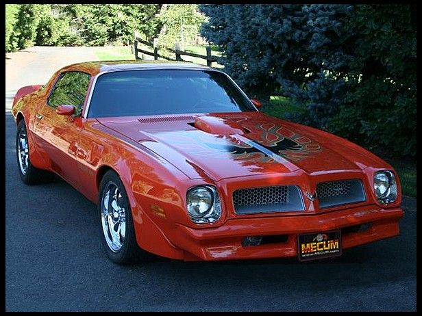 1976 Pontiac Trans Am  455/290 HP, 4-Speed   Last year for the 455ci engine