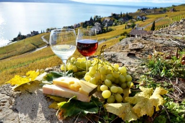A Guide to the Exhilarating Wine-tasting of Santorini