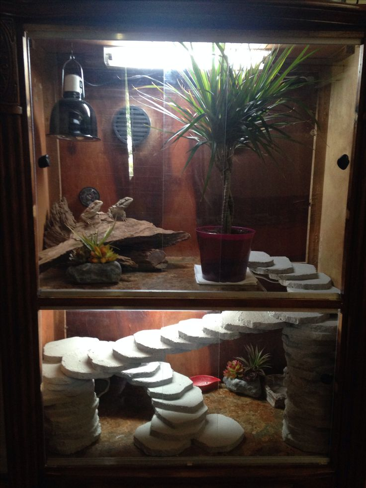 My bearded dragon cage made from a broken dresser :)