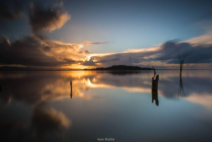 01 aprile 2017 – Foto di Loris Cintio | Associazione Nazionale Domiad Photo Network
