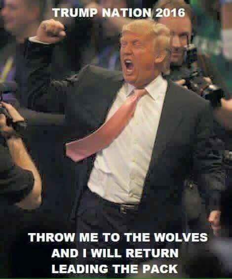 Truth. True leader!.... A REAL AMERICAN WINNER.......I'M VOTING FOR YOU BUDDY......VOTE TRUMP PEOPLE.!!!!!!!