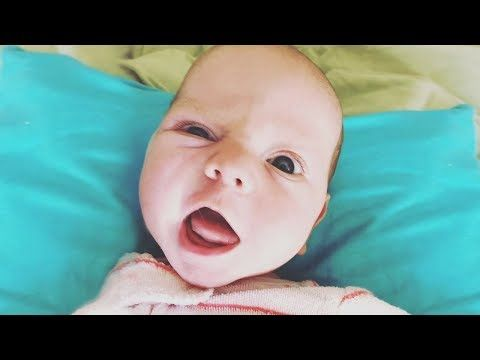 2017 Funny Babies Trying To Say First Words Funny Fails Baby Video Youtube Pinterest Funny Babies Trying To Say First Words Funny Fails Baby Video