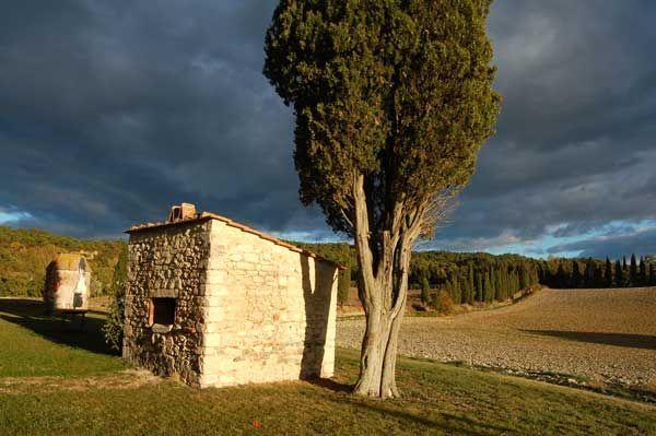 Fotografie del Casale in Toscana con immagini della piscina, del forno in pietra, della terrazza, della loggia con le antiche scale. Foto del giardino e fotografie panoramiche, scatti agli interni della Villa