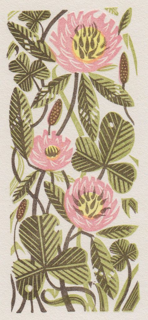 'Clover', wood engraving, by Angie Lewin, nature, plant, flower, printmaking, illustration