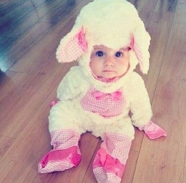 Cute baby lamb costume..my oldest baby's first halloween costume was the same as this one... she was the cutest lamb I ever saw... :)
