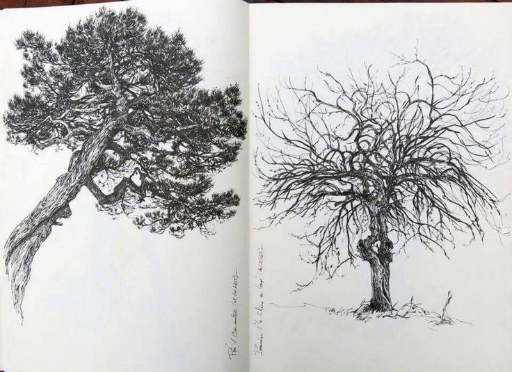 Yann Lesacher - Trees