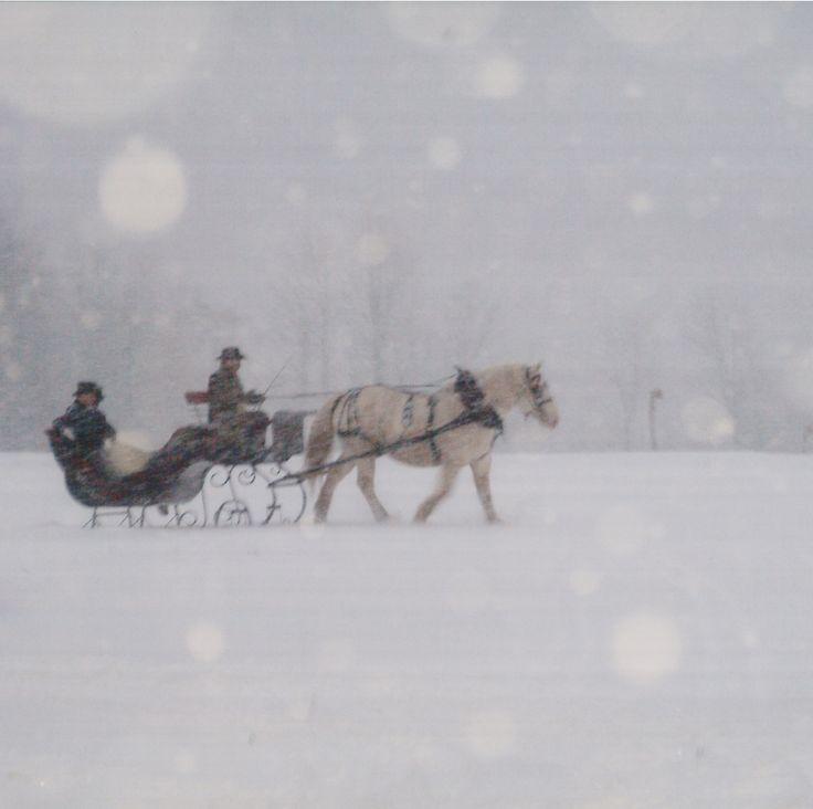 .Love a sleigh ride in the snow. Nothing better. Takes me back to our Christmas in the snow. Magical time.