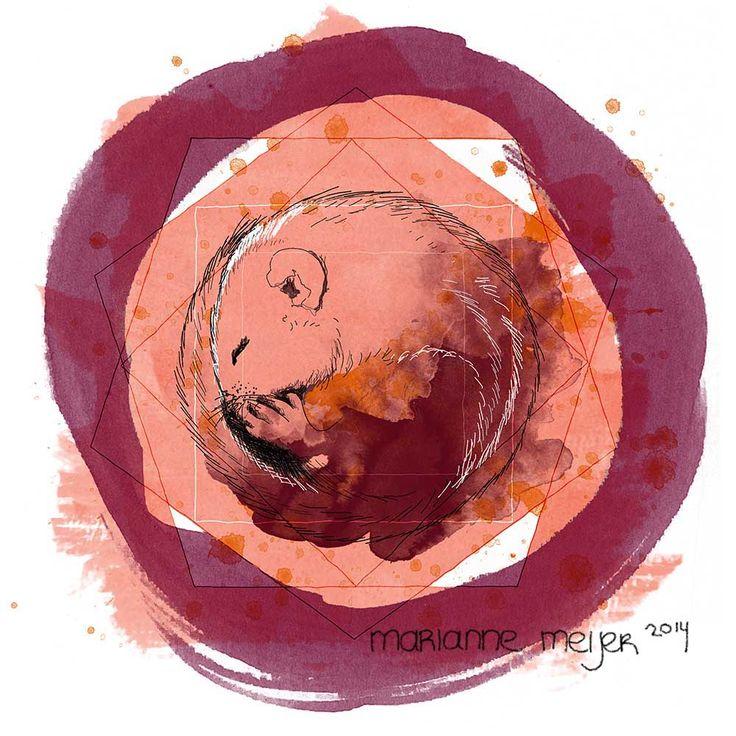 """Titel: """"Eekhoorn"""" 2014 Techniek: Digitale Illustratie Voor meer informatie: http://conceptenillustratie.nl/"""