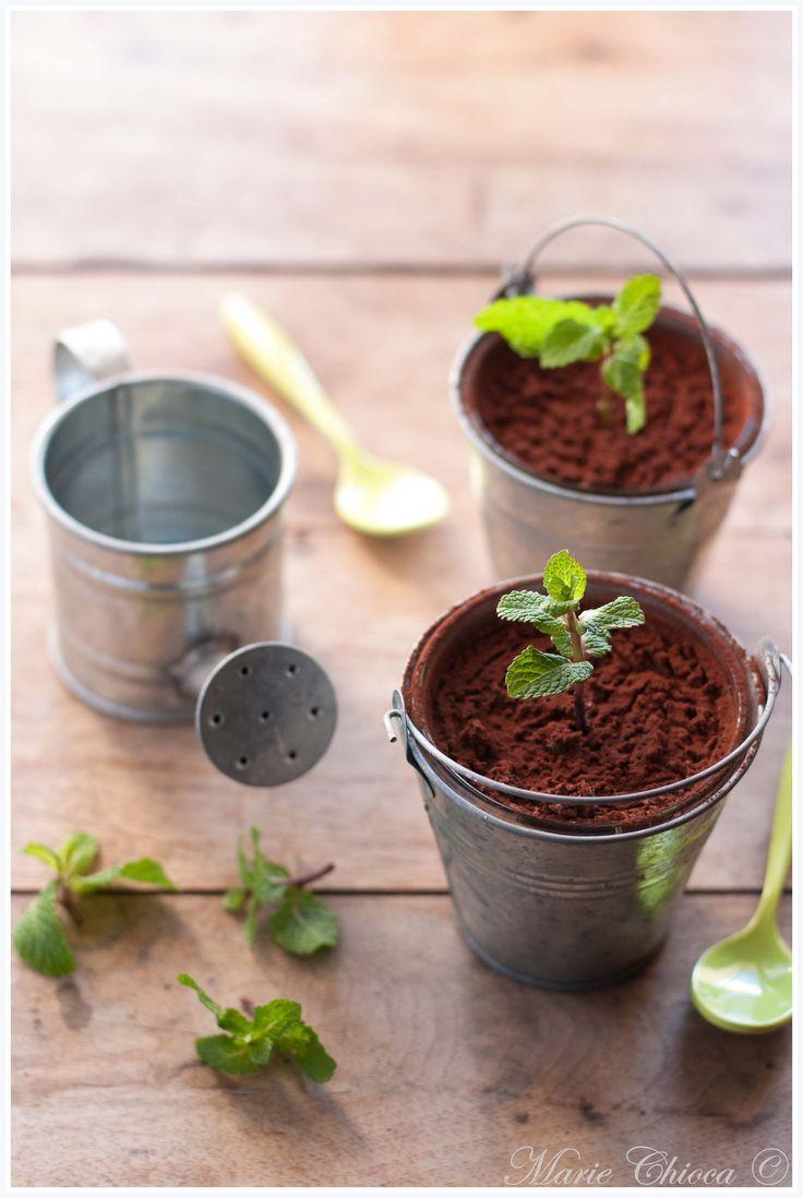 Petits pots de mousse choco-menthe au thé vert ( IG Bas, Sans Lait, Sans Oeufs, Sans Gluten, Vegan )