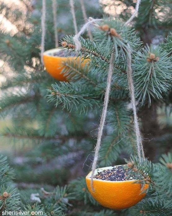 comederos para pajaros hecho con una cascara de naranja