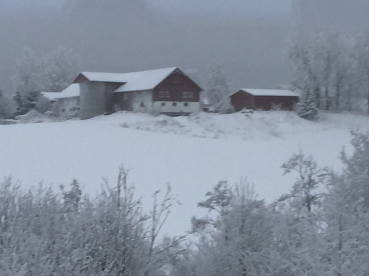 22.01.16: farm in winterdress, Øvre Romerike