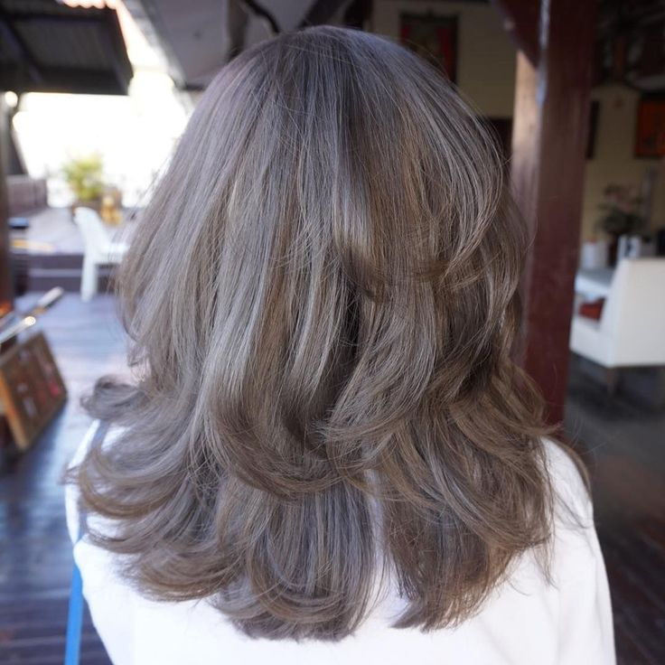1000 ideas about ash gray hair color on pinterest ash