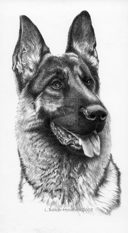 Pin By Michal On Tattoo13 In 2020 Animal Portraits Art German Shepherd Art Dog Art
