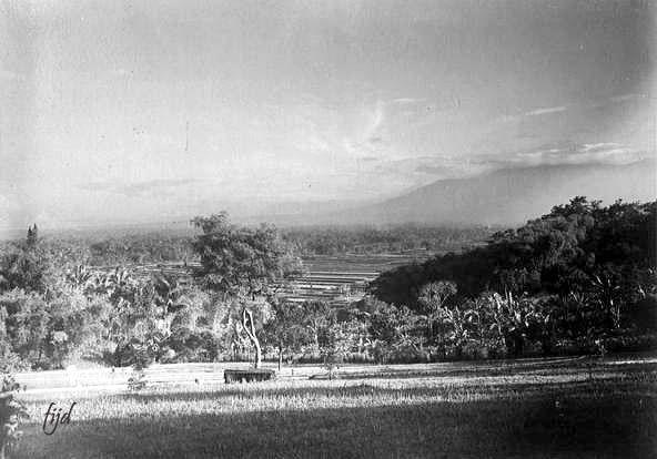 Pemandangan Sawah Dan Gunung Di Sukabumi Jawa Barat Sekitar 1900 Pemandangan Indonesia