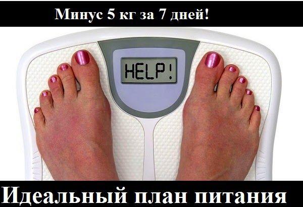 Минус 5 кг за 7 дней! Идеальный план питания, который поможет тебе стать стройнее. Секрет этой чудо-диеты в том, что ты тратишь энергию...