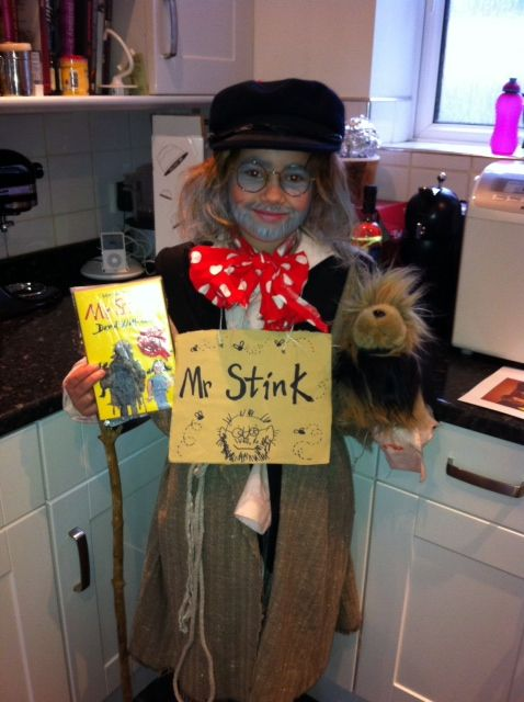 Mr Stink costume for World Book Day