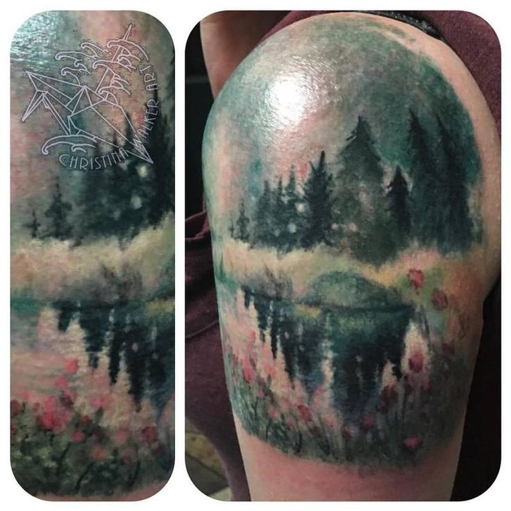 Watercolor Bamboo Tattoo: 44 Best Lucky Bamboo Tattoo Layton Images On Pinterest