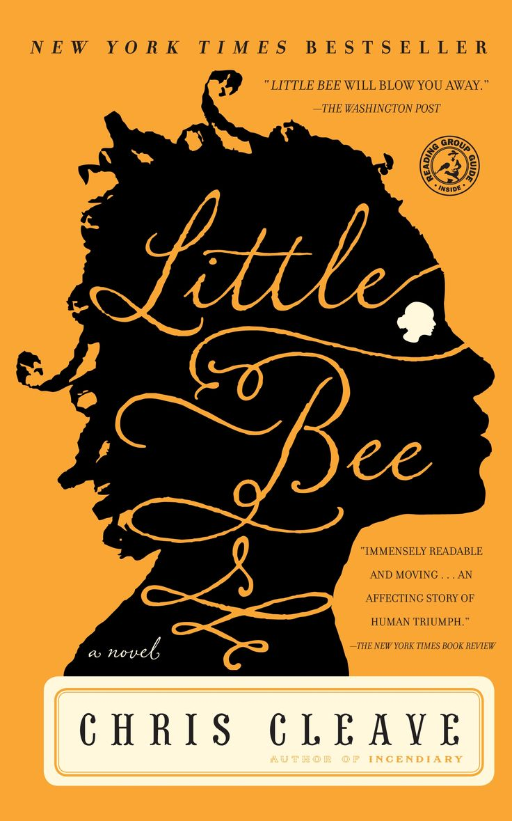 "Little Bee by Chris Cleave.  Great book about a tragic event from the past that connects two worlds.  NY Times Best Seller.  ""Cleave uses his emotionally charged narrative to challenge his readers' conceptions of civility, of ethical choice… An affecting story of human triumph.""— The New York Times"