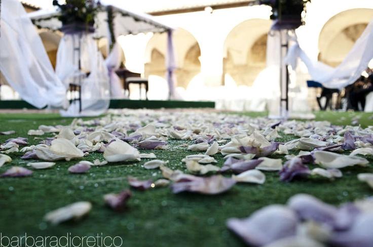 Barbara Di Cretico Photography | flowers