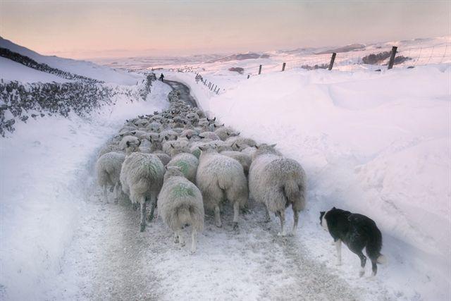 © Stephen Garnett, Yorkshire and the Humber, Shortlist, My UK - World Photography Organisation