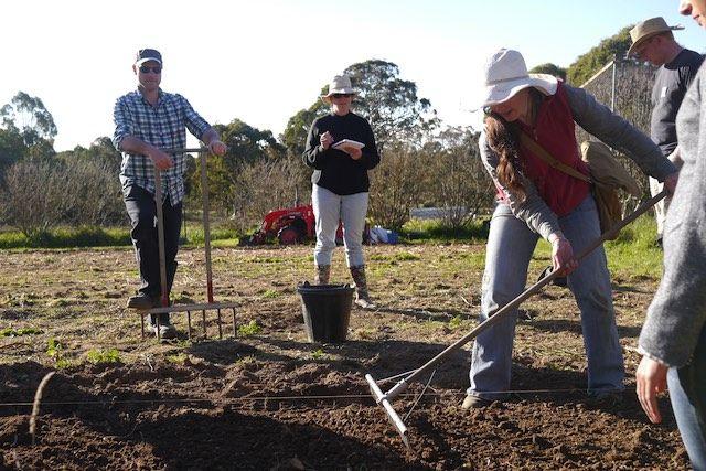 Market Garden Training this Spring