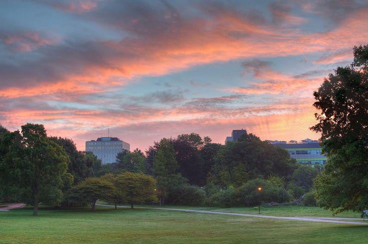 Goodmorning University of Waterloo, Ontario