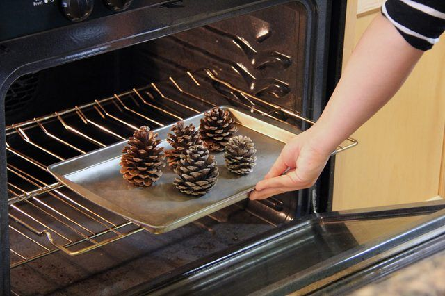 Use an old cookie sheet for the job because sap on pine cones will also melt in the oven.