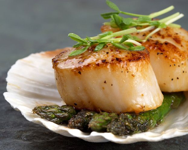 Easy recipes for sea scallops