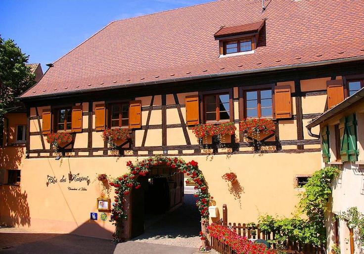 Clos des Raisins (68980 Beblenheim, Haut-Rhin - Alsace, France)