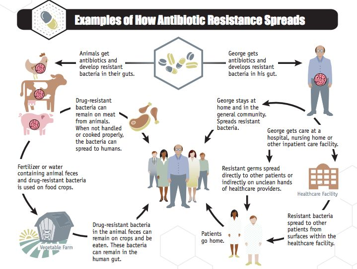 Climate change and antibiotic resistance are two hot topics, but we're…