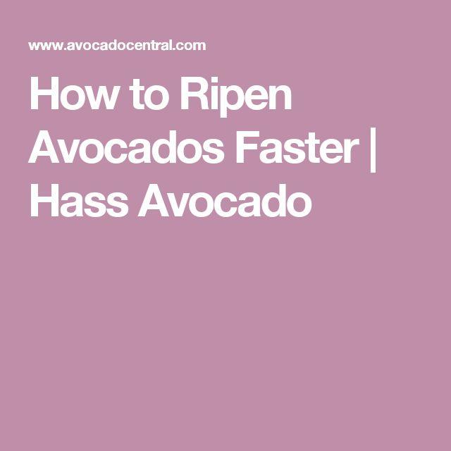 How to Ripen Avocados Faster   Hass Avocado