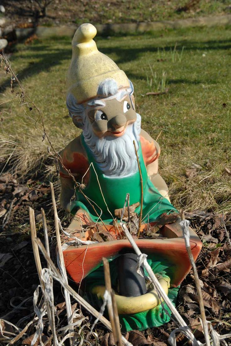 Gnome In Garden: 17 Best Images About Garden Gnomes/maintenance Of Them Etc