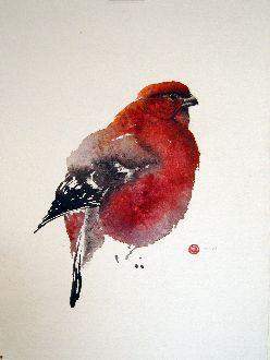 Pine Grosbeak Male - Karl Mårtens   - watercolor
