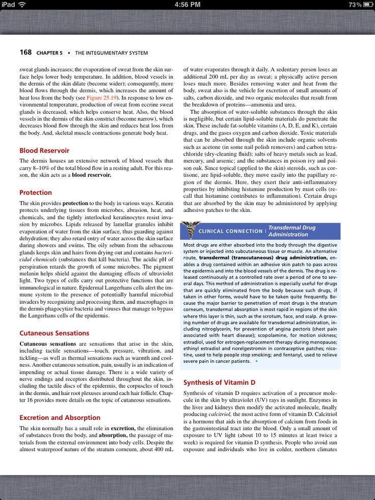 35 best Chapter 8, The Skeletal System: The Appendicular Skeleton ...