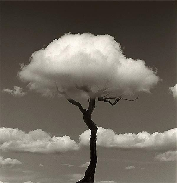 By Chema Madoz  https://www.facebook.com/pages/Chema-Madoz/14514661307