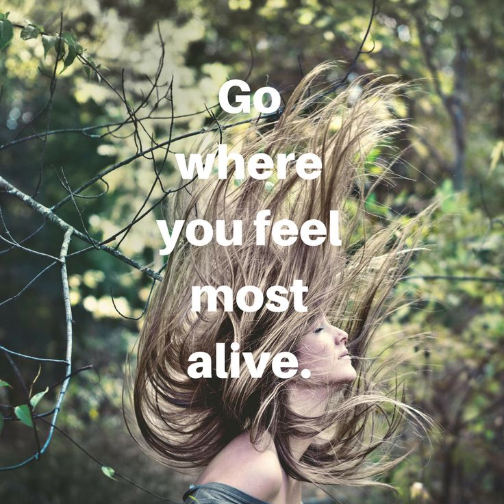 Go where you feel most alive. #todaysquote #inspiration #motivation #zipstrr #trendsettrr #madeinberlin #fromhollywood #infilmunited #youonlyziponce #doitberlinstyle #wednesdayquote